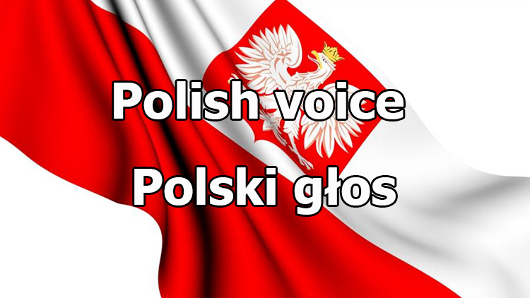Polish crew voice for World of Tanks 1.7.0.2